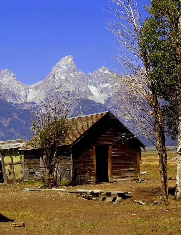 Teton Cabin Photograph