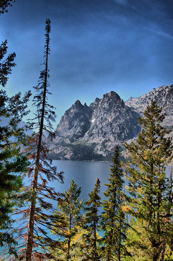 Tetons at jenny lake photograph