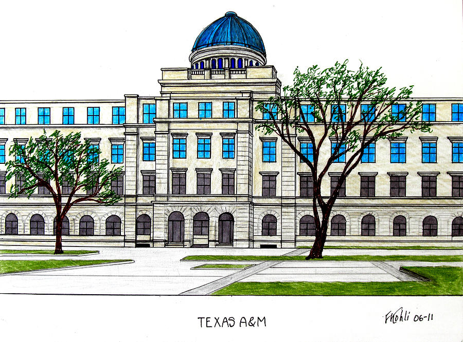 Texas Am University Drawing  - Texas Am University Fine Art Print