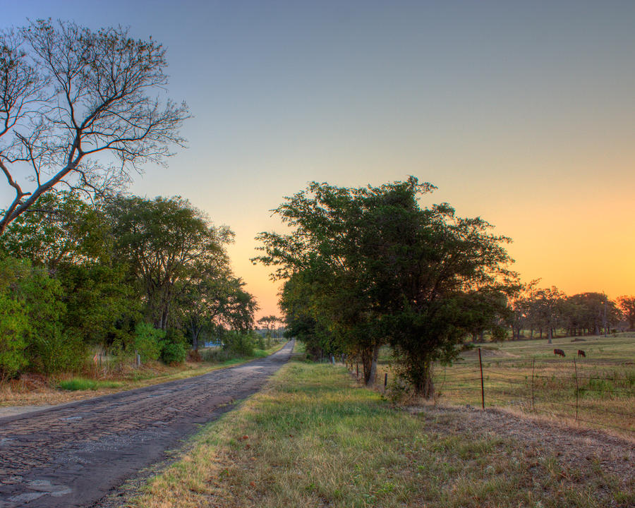 Texas Farm Road Photograph  - Texas Farm Road Fine Art Print