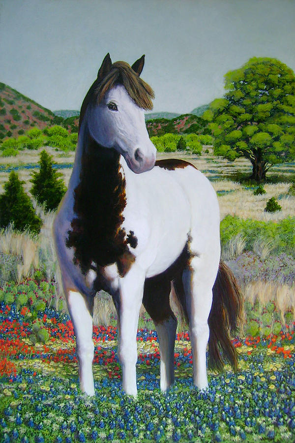 Texas Hill Country Stallion Painting