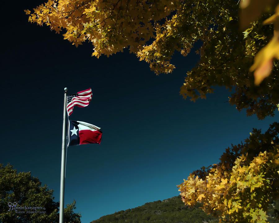Texas Pride Pyrography