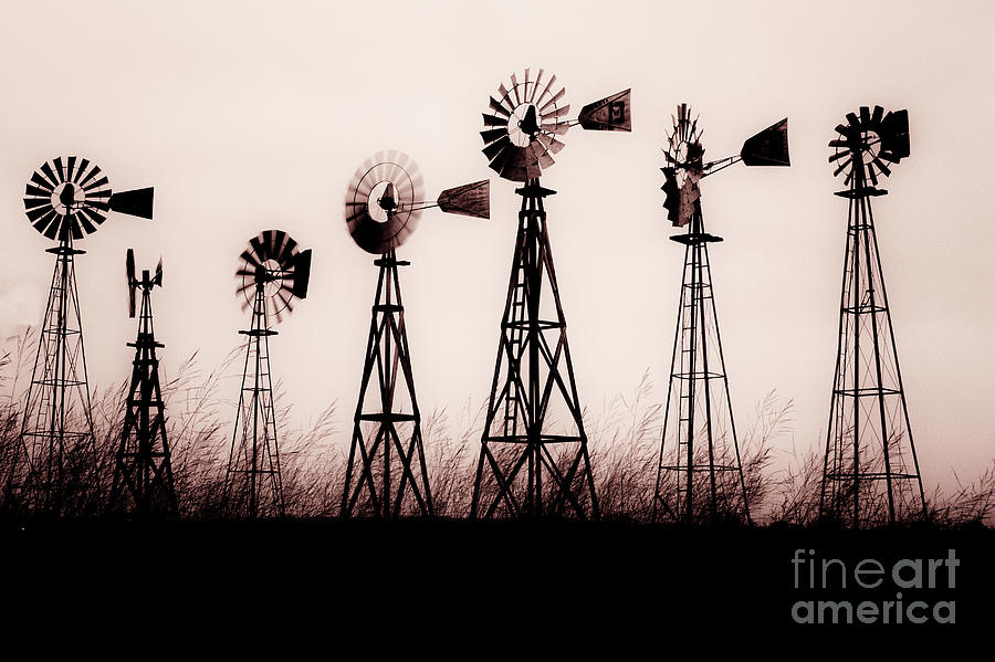 Texas Windmills Photograph