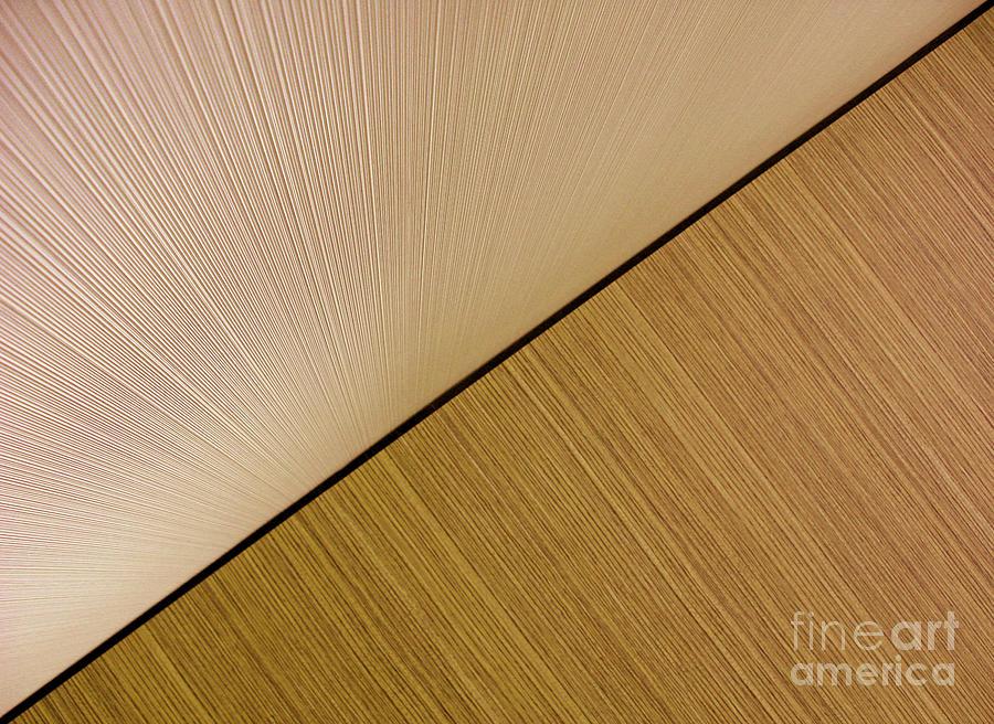 Textures. Beige. Photograph