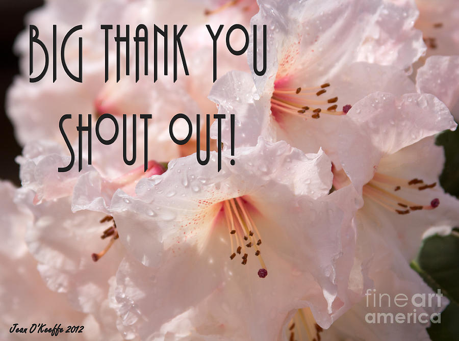 Thank You Shout Out Photograph  - Thank You Shout Out Fine Art Print