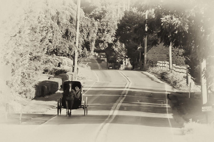 The Amish Buggy Photograph