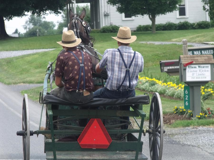 witness amish and contemporary society Why children are killing children in modern society (1:2 and nickel mines amish school he has been an expert witness and consultant in.