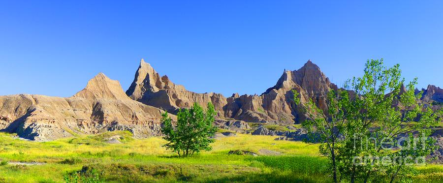 The Badlands Mural Photograph
