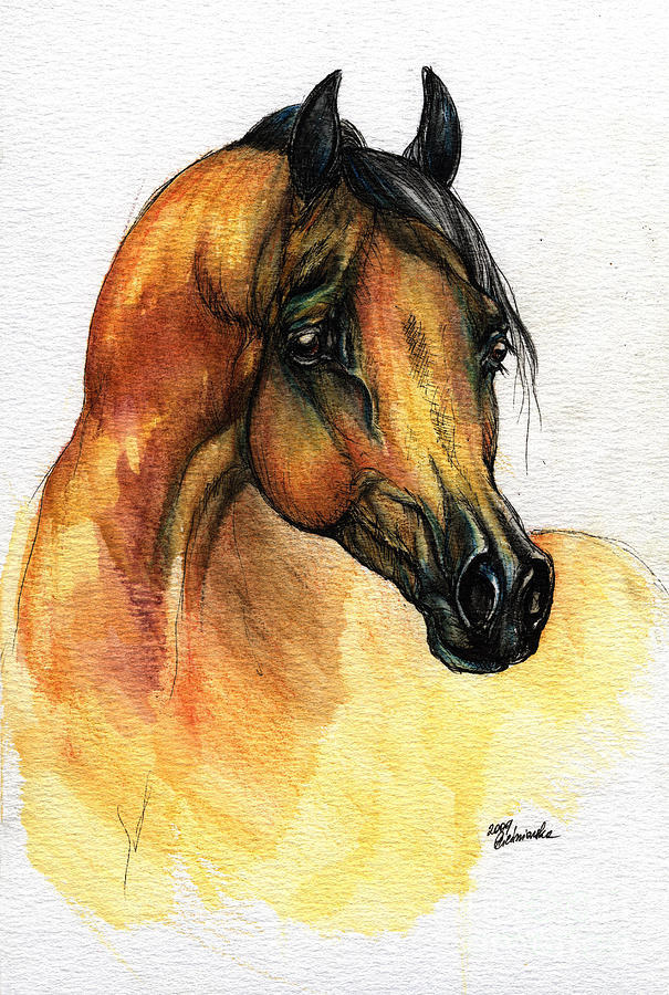 The Bay Arabian Horse 14 Painting  - The Bay Arabian Horse 14 Fine Art Print
