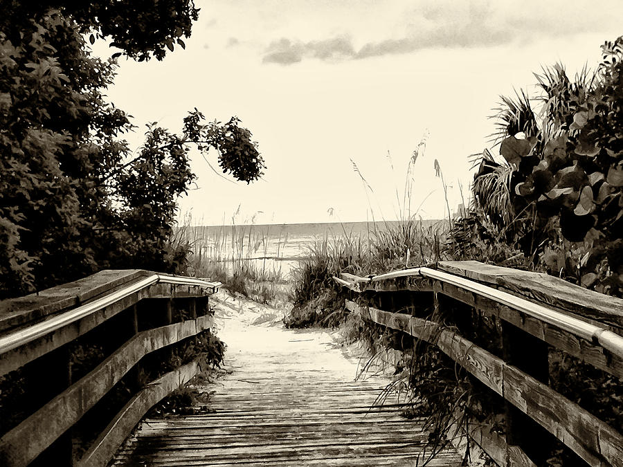 The Beach Path - Clearwater Beach Photograph