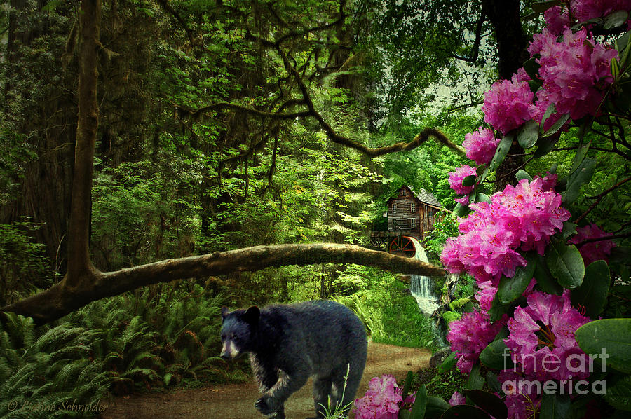 The Bear Went Over The Mountain Digital Art  - The Bear Went Over The Mountain Fine Art Print