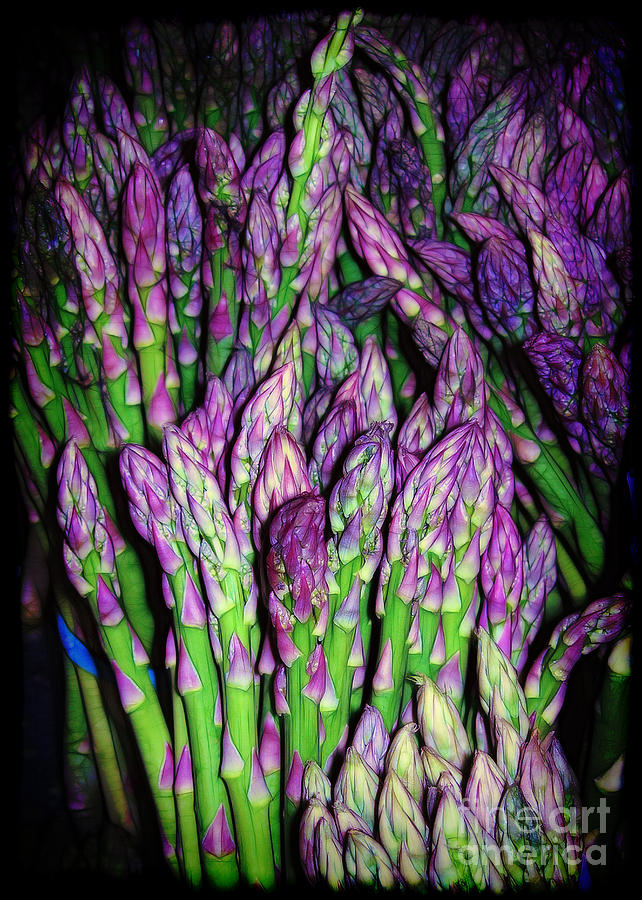 The Beauty Of Asparagus Photograph