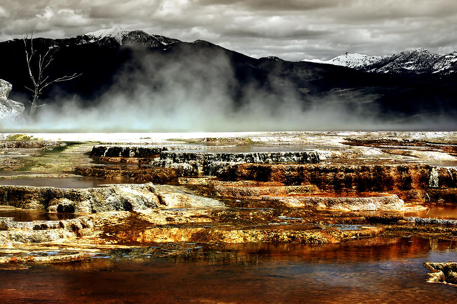 The Beauty Of Yellowstone Photograph