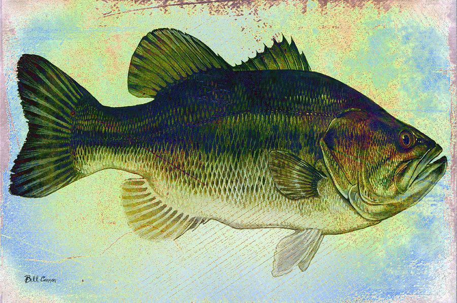 The Big Fish Photograph  - The Big Fish Fine Art Print