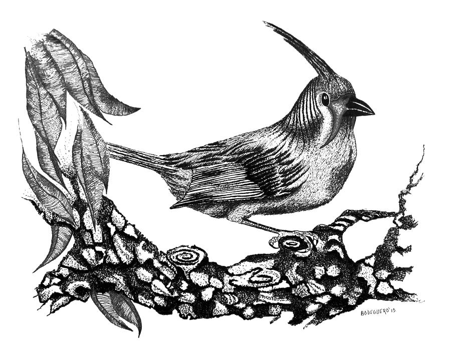 Drawing Drawing - The Black Bird by Mario Perez