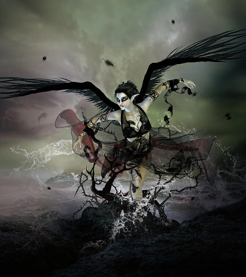 The Black Swan Digital Art  - The Black Swan Fine Art Print