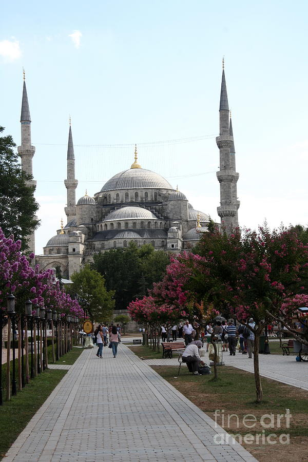 The Blue Mosque  - Istanbul Photograph
