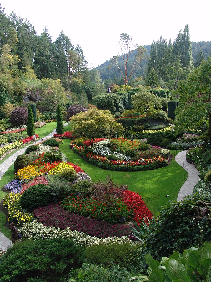 The Butchart Gardens Victoria Bc Canada 2 By Alex Vishnevsky