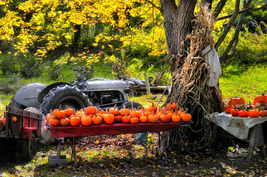 The Colors Of Harvest Season In New England Photograph  - The Colors Of Harvest Season In New England Fine Art Print