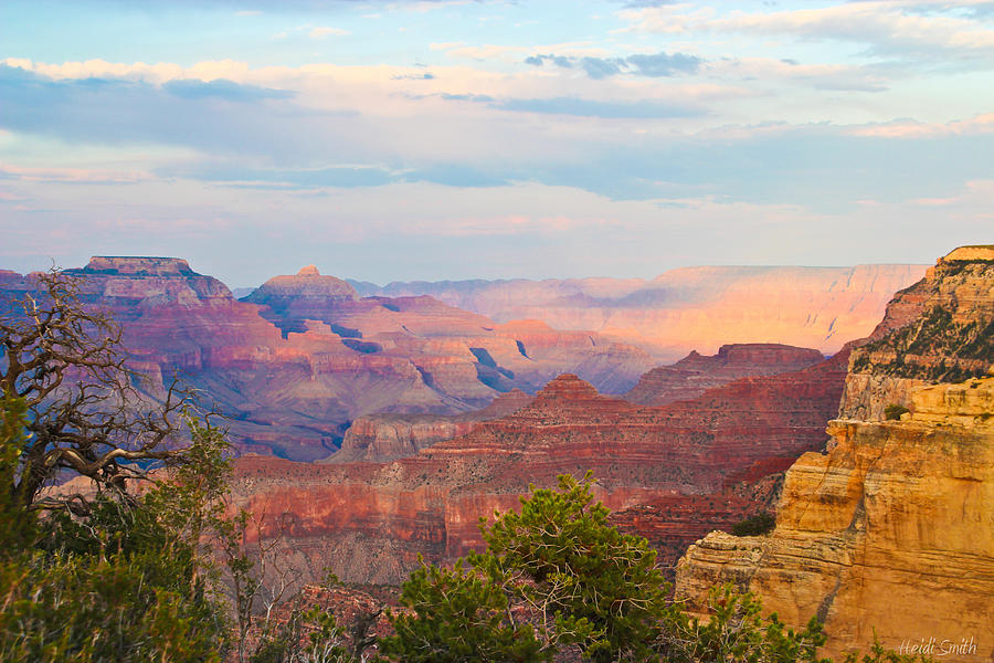 Grand Canyon Photograph - The Colors Of The Canyon by Heidi Smith