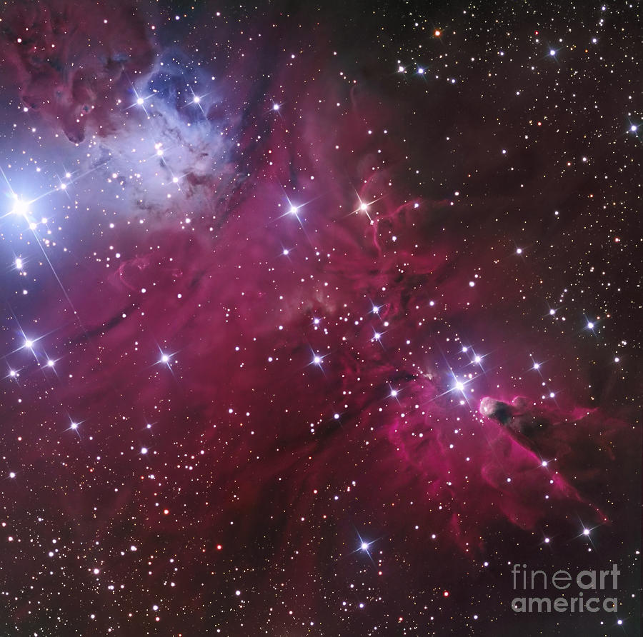 The Cone Nebula And Christmas Tree Photograph