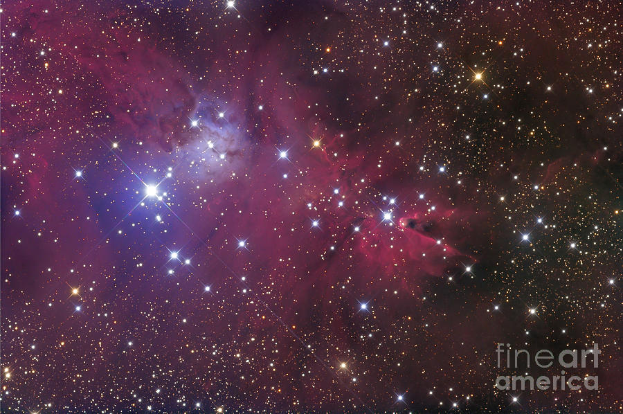 The Cone Nebula Photograph  - The Cone Nebula Fine Art Print