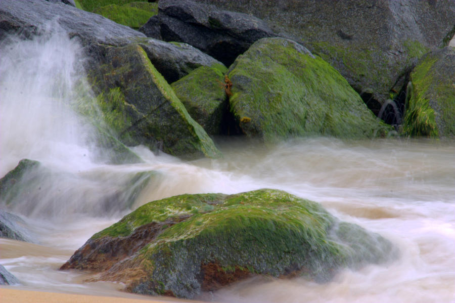 The Dancing Tide Photograph