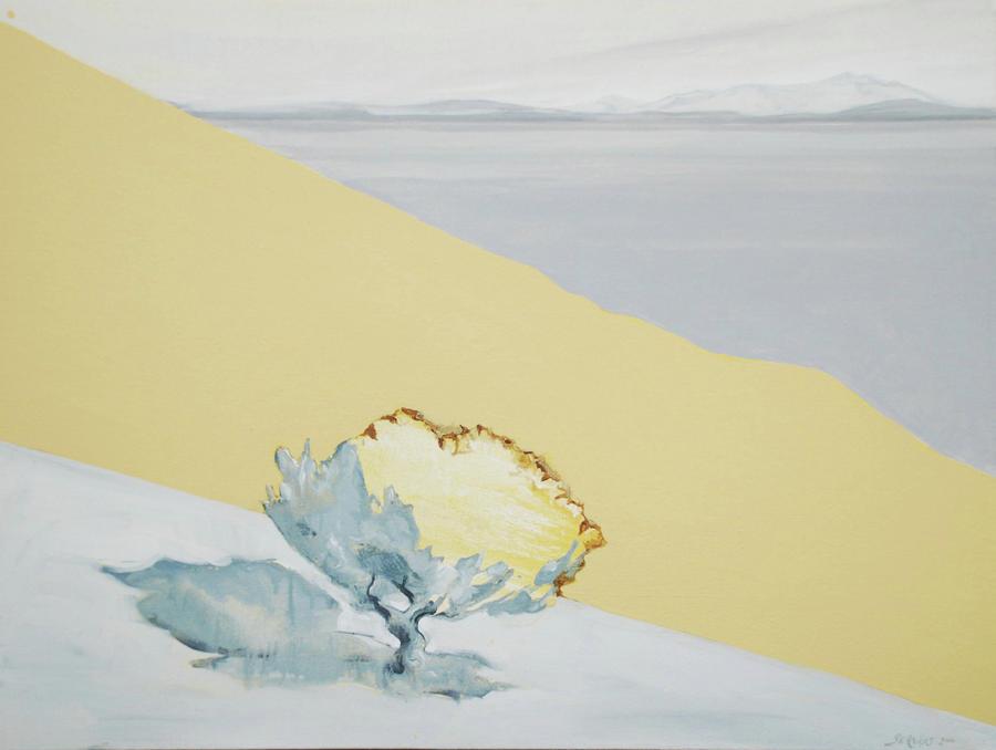 The Desert Floor  Painting