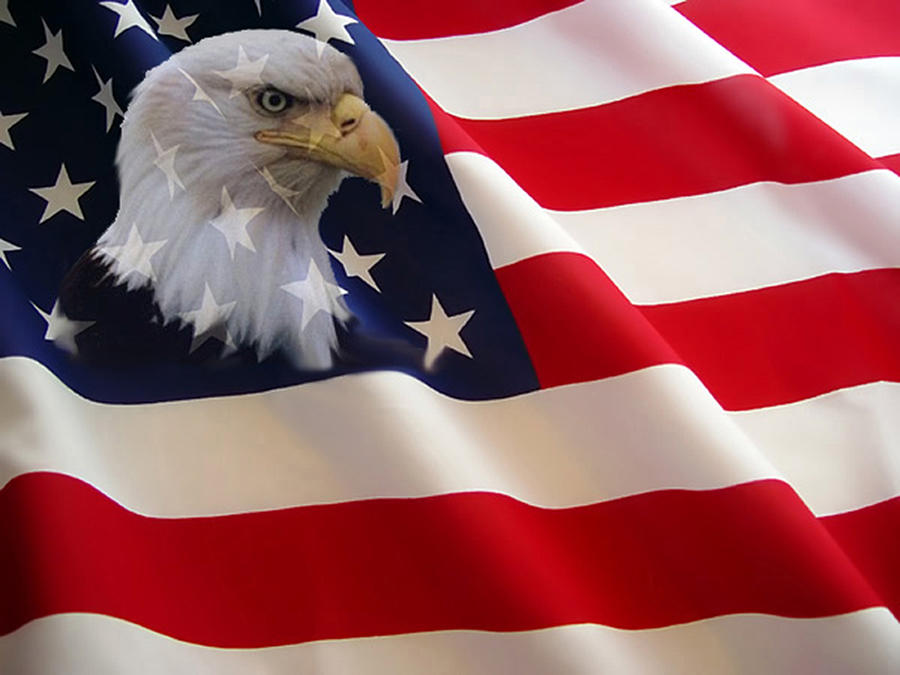 The Eagle Flag Photograph