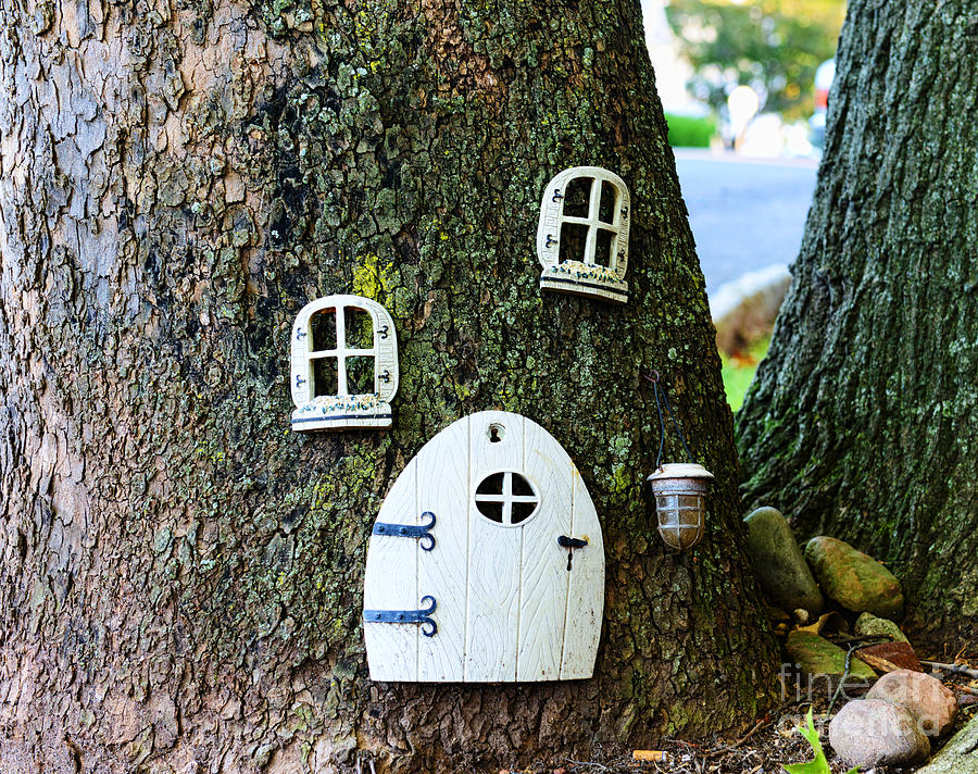 The Elf House Photograph  - The Elf House Fine Art Print