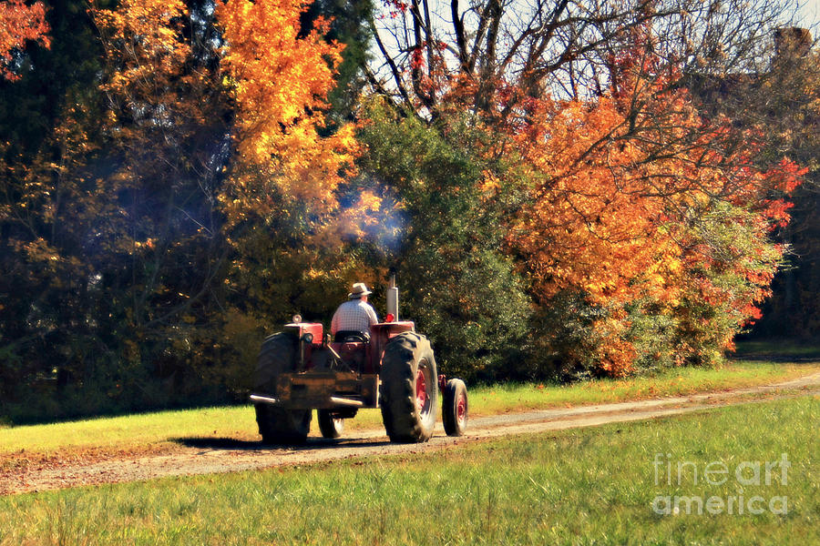 The Farmer Photograph  - The Farmer Fine Art Print