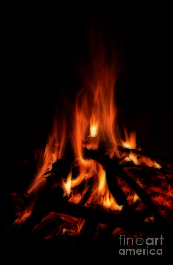 Campfire Photograph - The Fire by Donna Greene