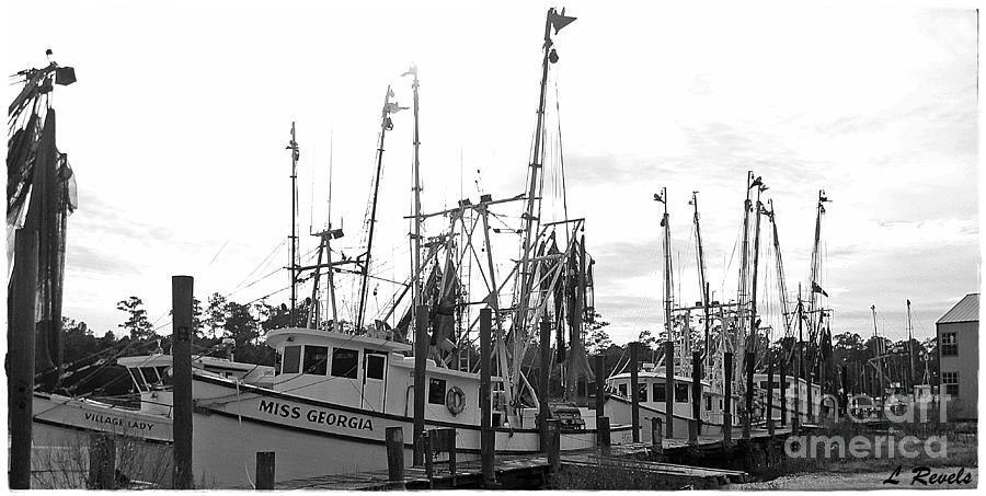 The Fleet Photograph