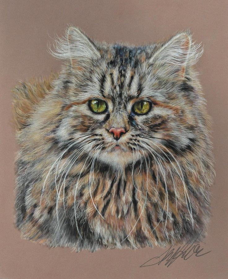 The Fluffy Feline Pastel