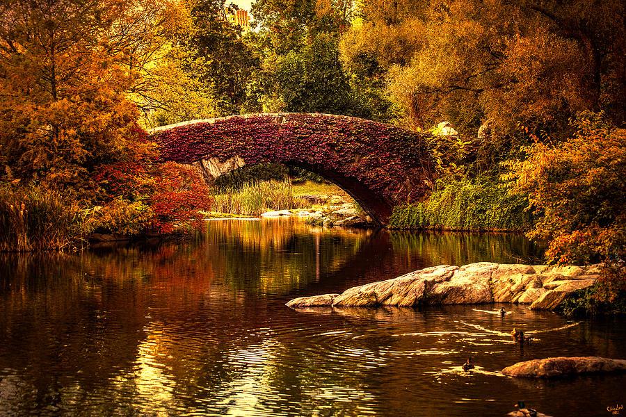 The Gapstow Bridge Photograph By Chris Lord