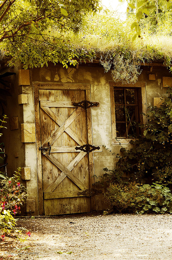 Garden Digital Art - The Garden Shed by MaryJane Armstrong