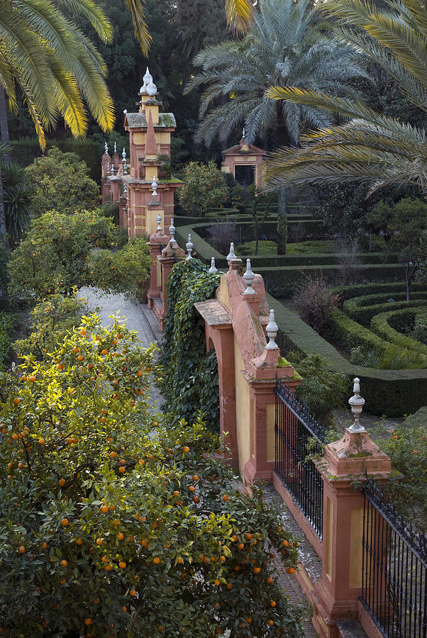 The Gardens Of The Alcazar Palace Photograph  - The Gardens Of The Alcazar Palace Fine Art Print