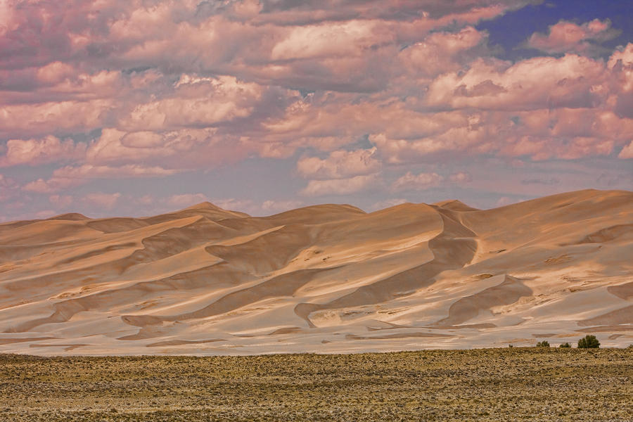 The Great Colorado Sand Dunes  177 Photograph  - The Great Colorado Sand Dunes  177 Fine Art Print