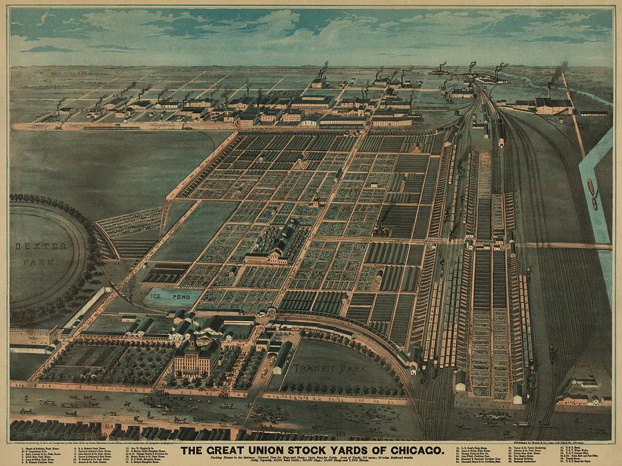 The Great Union Stock Yards Of Chicago Photograph