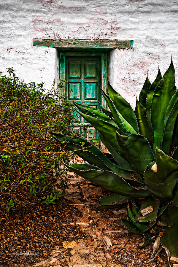 The Green Door Photograph  - The Green Door Fine Art Print