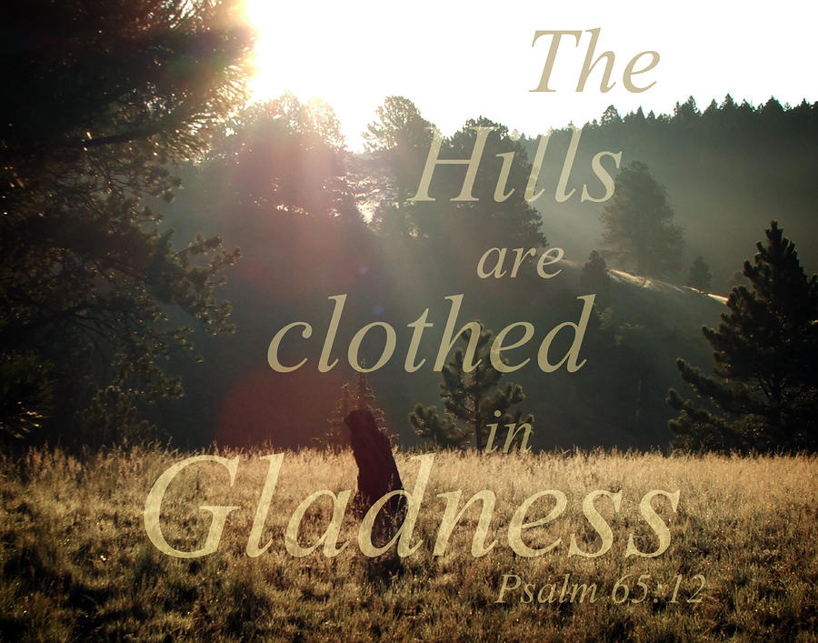 The Hills Are Clothed In Gladness Photograph