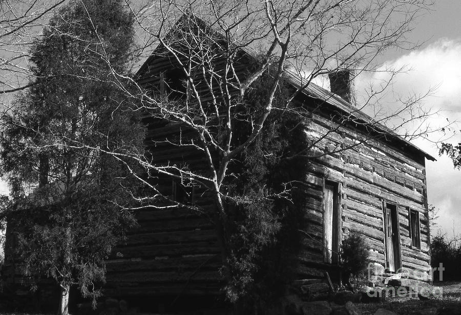 The Homestead Photograph  - The Homestead Fine Art Print
