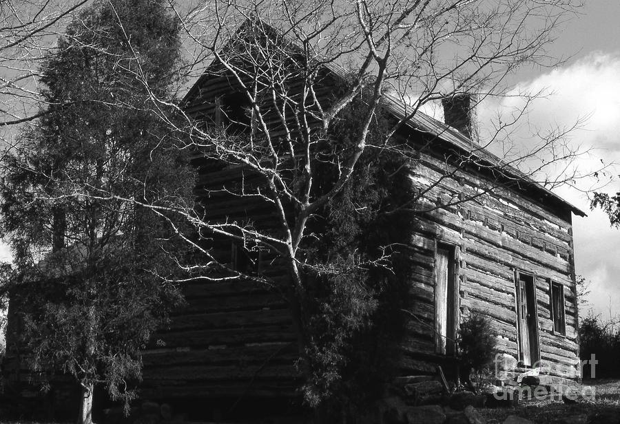 The Homestead Photograph