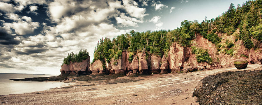 The Hopewell Rocks Photograph  - The Hopewell Rocks Fine Art Print