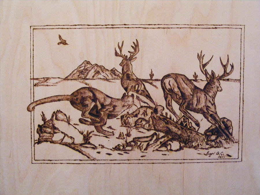 The Hunter-big Predators-cougar 1 Pyrography Study Pyrography  - The Hunter-big Predators-cougar 1 Pyrography Study Fine Art Print