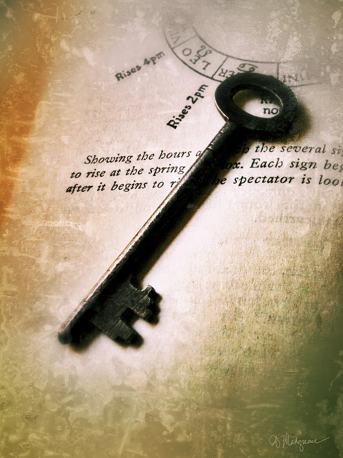 The Key Digital Art  - The Key Fine Art Print