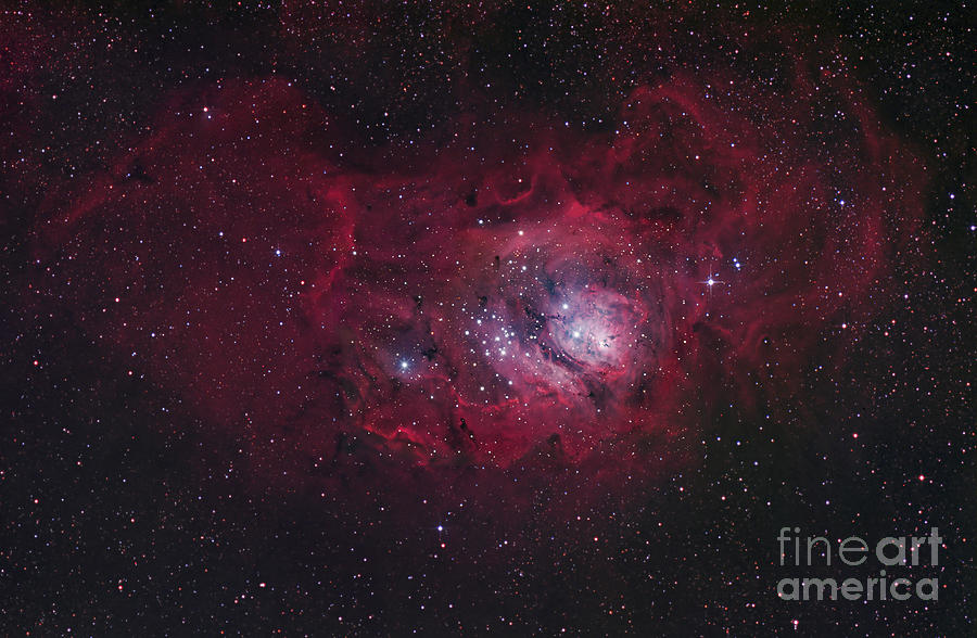 The Lagoon Nebula Photograph  - The Lagoon Nebula Fine Art Print