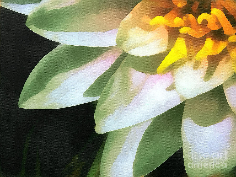 The Lily Flower Painting  - The Lily Flower Fine Art Print