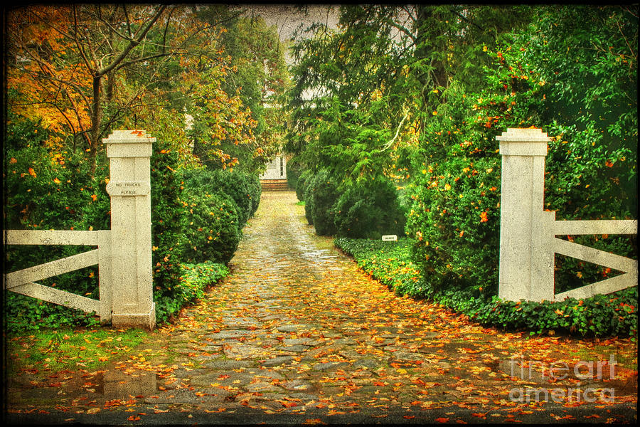 The Long Lonely Path Photograph  - The Long Lonely Path Fine Art Print
