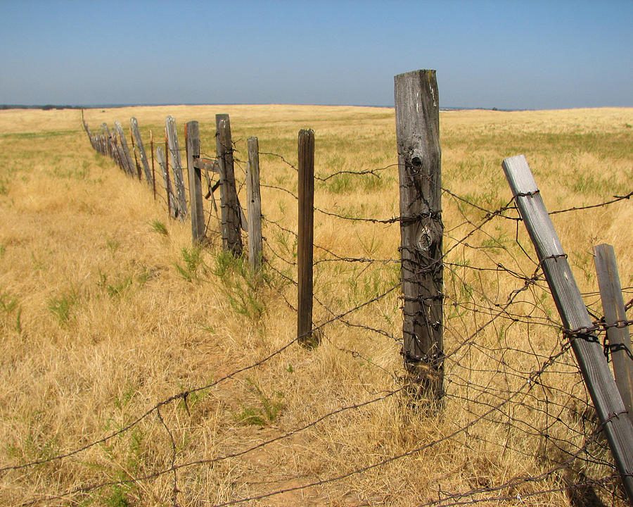 The Long Long Fence Photograph